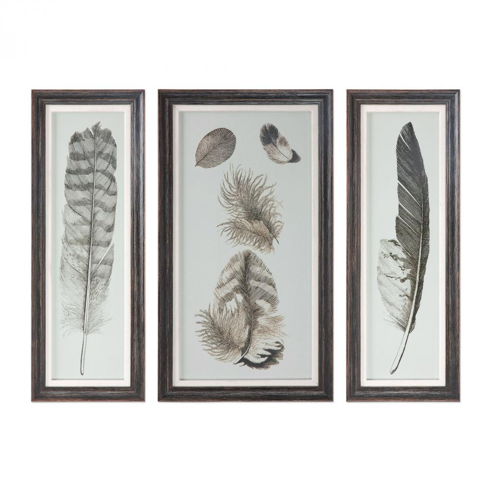 Vinings Lighting Inc in Alpharetta, Georgia, United States, Uttermost 33632, Uttermost Feather Study Prints, S/3, Feather Study
