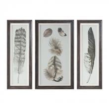 Uttermost 33632 - Uttermost Feather Study Prints, S/3